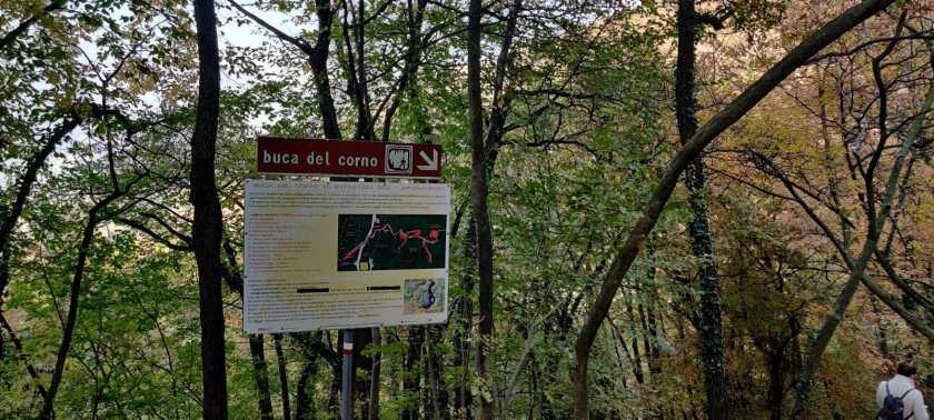 bosco che porta alla Buca del Corno di Entratico