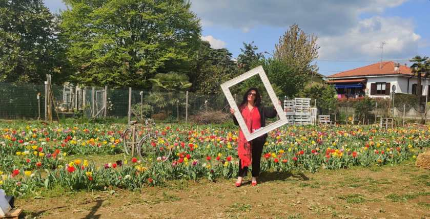 Tulipani a Bergamo