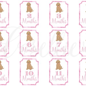Pink Lab Baby Monthly Milestone Cards, monthly milestone cards, baby girl milestone cards, Dog milestone cards, Labrador, Month by month, Print from home cards, DIY cards