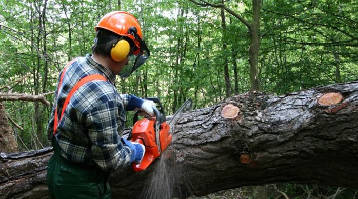 Wood Hand Chipper Held