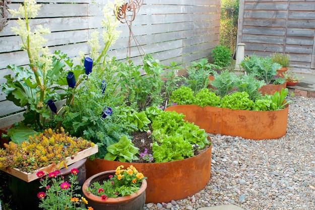 2-garden-design_9011