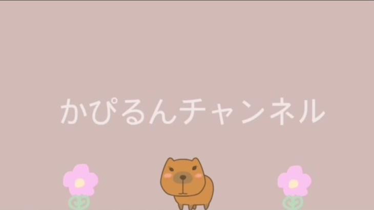 美容コスメ購入品紹介