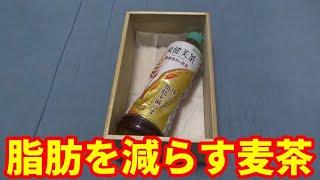 【ダイエット】『爽健美茶(健康素材の麦茶)』を飲んでみた【渋い男のスリムアップ生活】