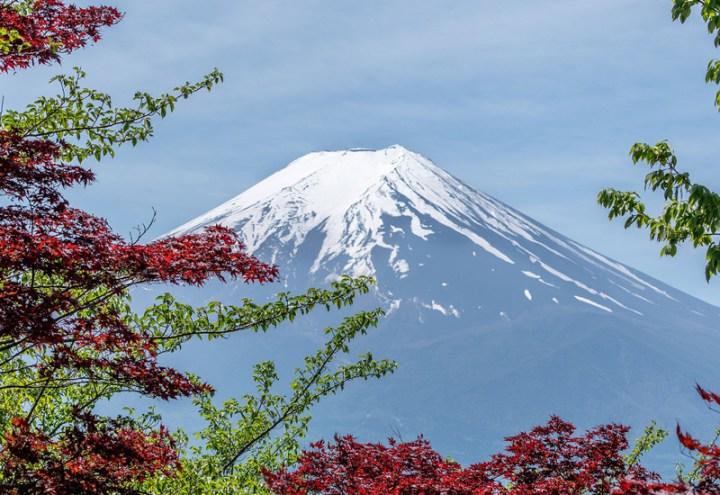 バライオ(baraio)は富士山の伏流水で蒸留