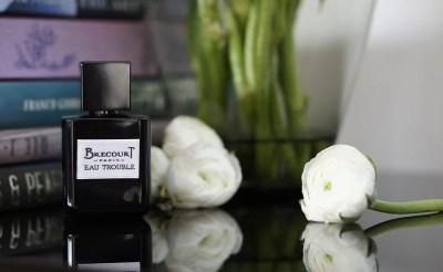 Brecourt Paris Eau Trouble Duft Parfüm Parfum Perfume Fragrance Scent Niche Nischenparfüm духи парфюм нишевая парфюмерия аромат ниша Брекур