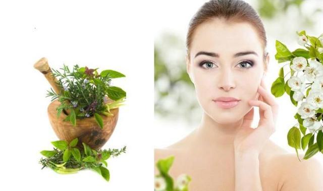 Травы для лица - секрет молодости кожи?