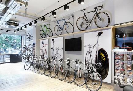 kinoko cycles 3