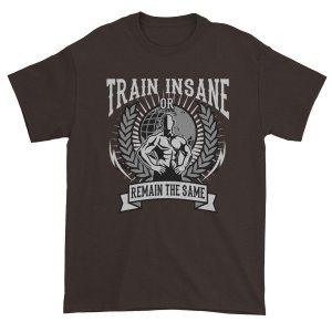 Train Insane Or Remain The Same Workout Motivational T-Shirt
