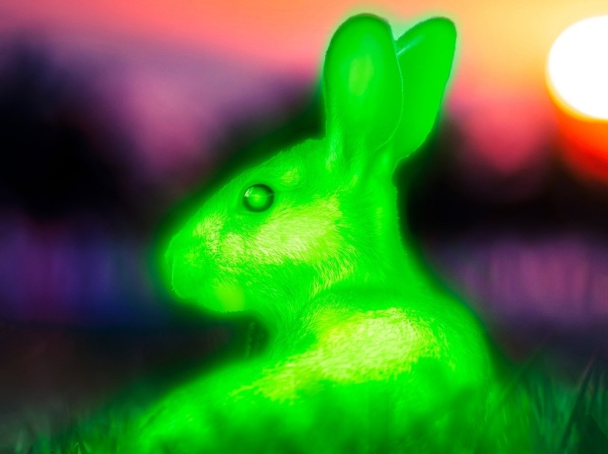 "Green rabbit from ""Second Nature"" book cover"