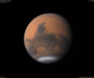 Mars-Damian-Peach-300x250.jpg