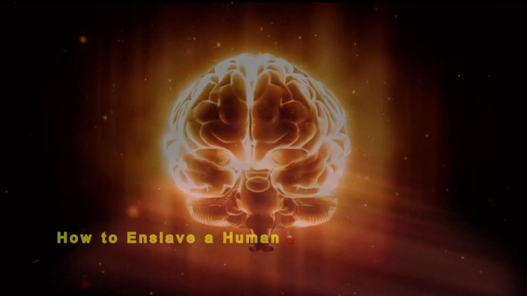 How to Enslave a Human