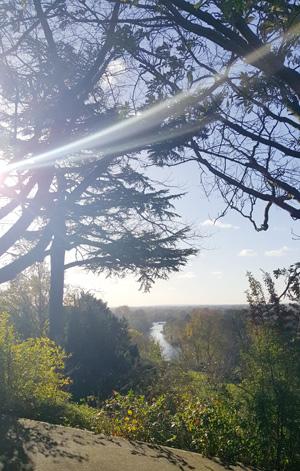 Utsikt från kullen vid Richmond Park.