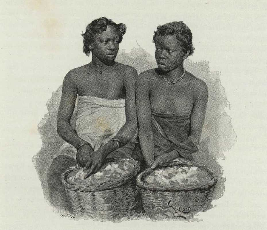 mossi traders