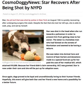 star in cosmodoggyland news