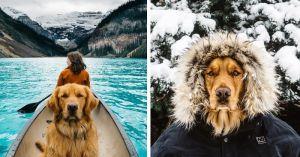 Traveling Dog Mountain Kayak
