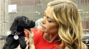 Denise Richards adoptóa Tara, un cachorro rescatado durante el huracán de Sandy www.ontheredcarpet.com