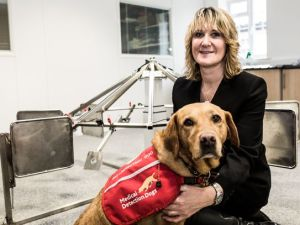 Cancer and Medical Detection Dogs