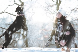 Joyful Dog Jumping in the Snow