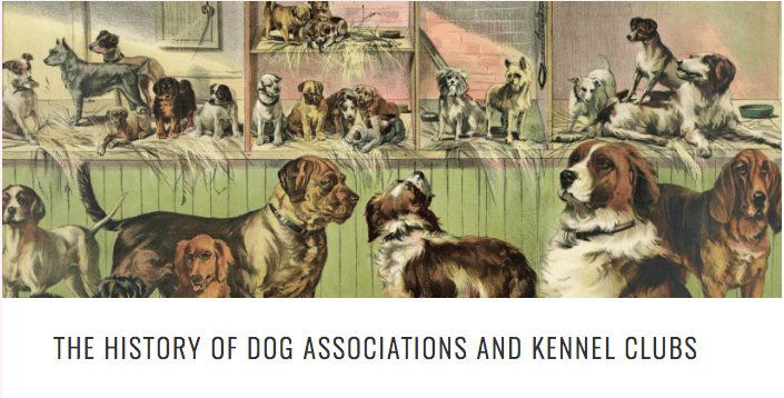 KENNELS-2BHISTORY-2BHEAD.png