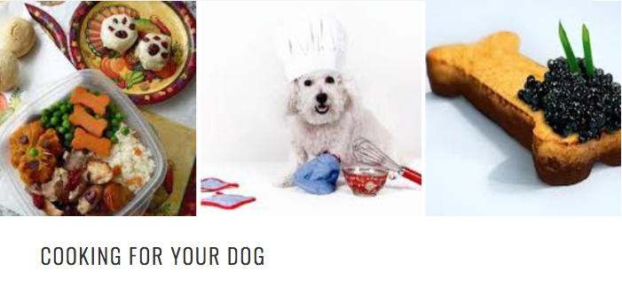 recipes for dogs- Cosmodoggyland.com