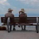 El mejor perro para las personas mayores - Beneficios en la salud