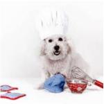 Cuisiner pour son chien