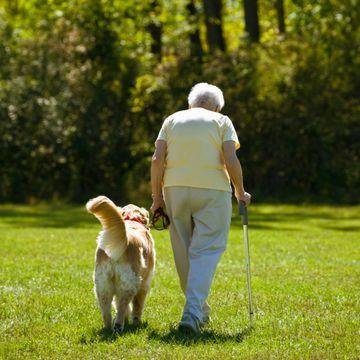 senior-woman-walking-dog