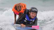 Chien fait du surf avec un enfant atteint de quadriplégie