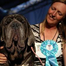 Martha Ugliest Dog - 2017 & her owner
