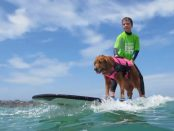 Child with autism surfing with therapy dog