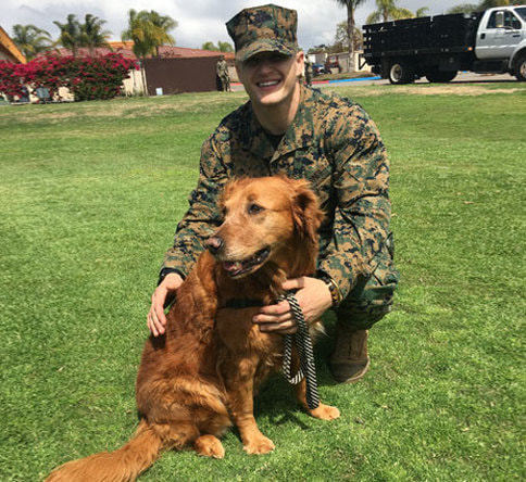 Therapy dog with a veteran