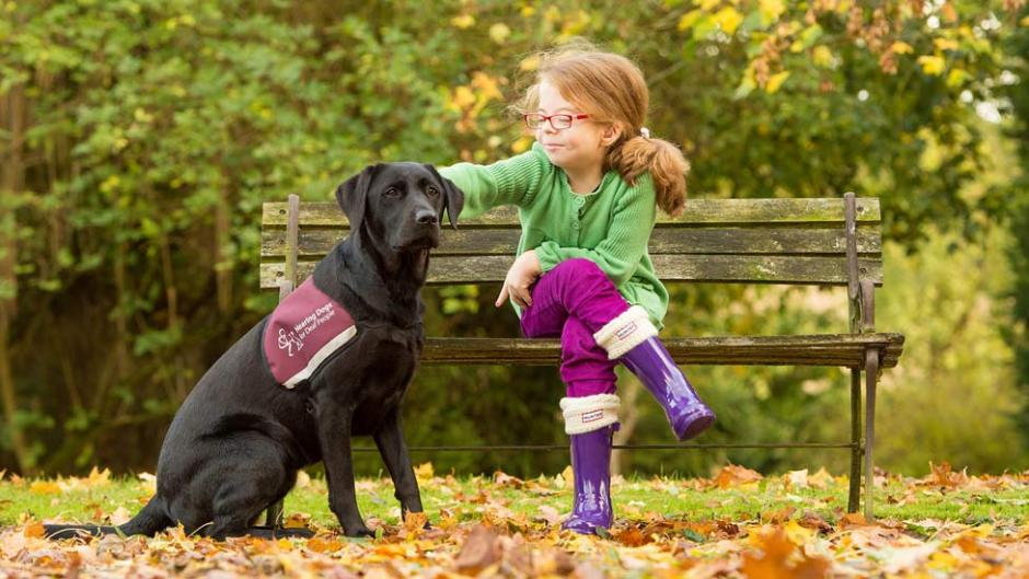 Deaf girl sitting in park with service dog - signal dog, hearing dog