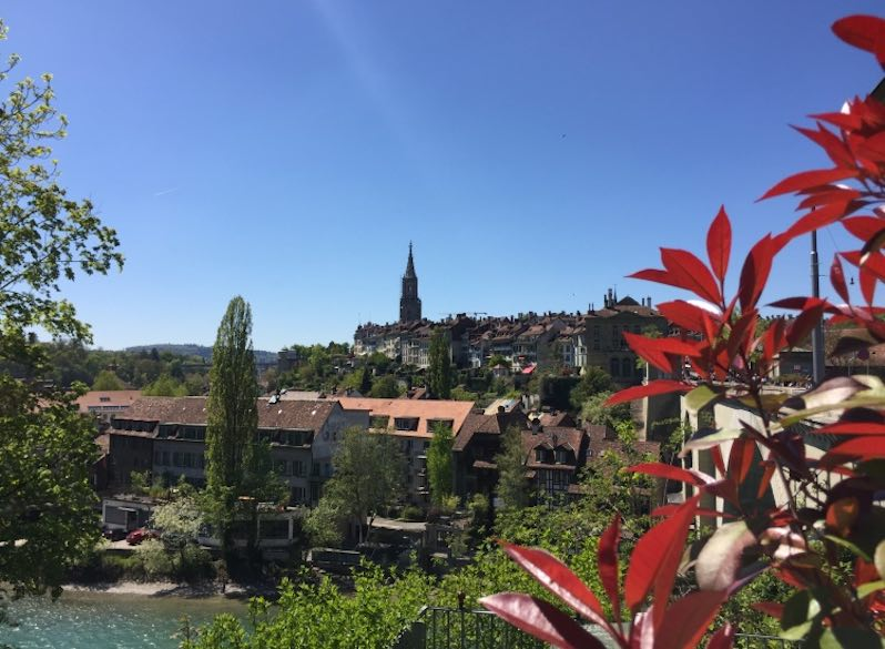 An amazing view of the city of Bern from the Bärengraben or Bear Pit, taken from behind a red-leaved tree on a sunny day wit clear blue sky