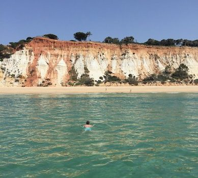 CosmopoliDad swimming in the crystal-clear turquoise water along the stunning coastline of the authentic Algarve in Portugal, view from the boar