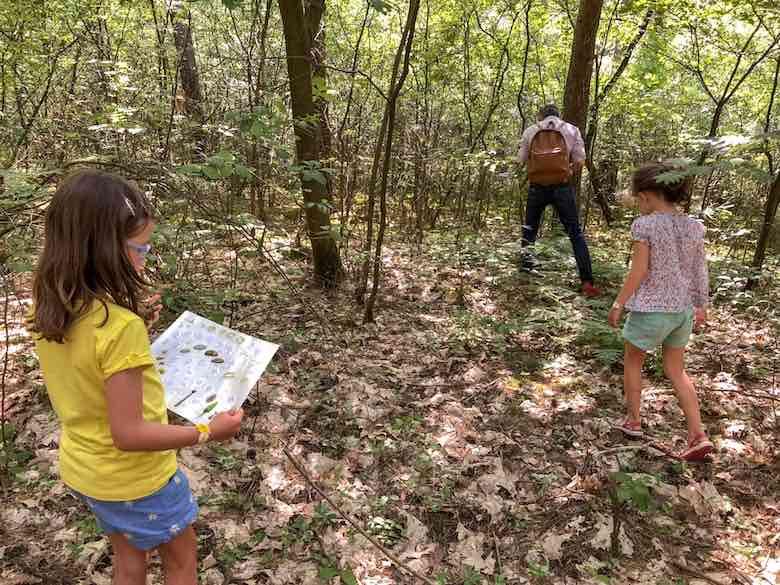 Op zoek naar sporen van dieren tijdens de Junior Ranger wandeling in Natuurpark Hoge Kempen in Limburg