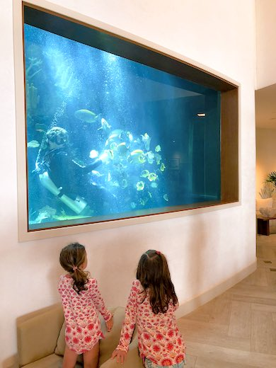 Two little sisters watching a diver feed the fish at the oceanarium at Alohilani Resort Waikiki Beach