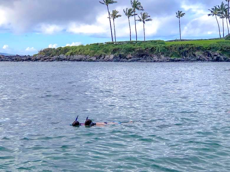 Snorkeling is one of the things to do in Maui with kids
