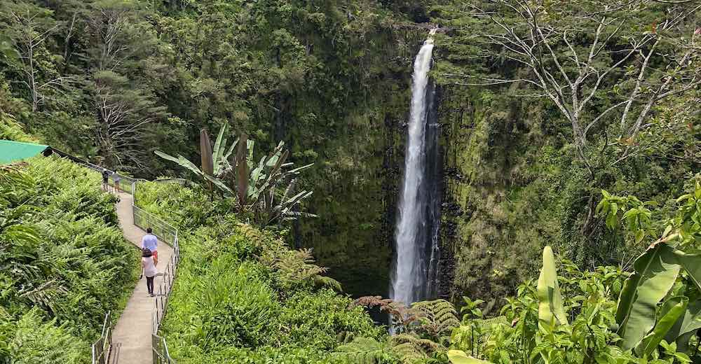 Akaka Falls on Big island, a great choice when considering which Hawaiian island to visit