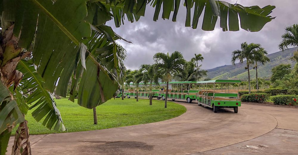 Tram at the Maui Tropical Plantation, a great place to visit with kids in Maui