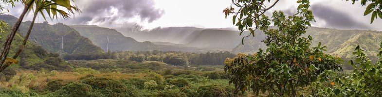 Maui hikes: Volcano, mountain, coastal and waterfall hikes on Maui