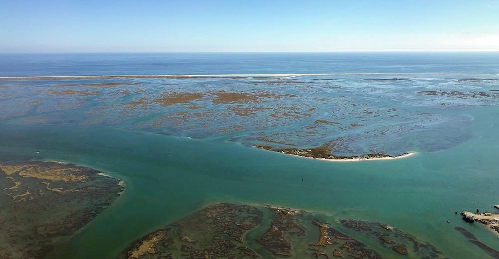 Day trip from Lagos to the Ria Formosa Natural Park