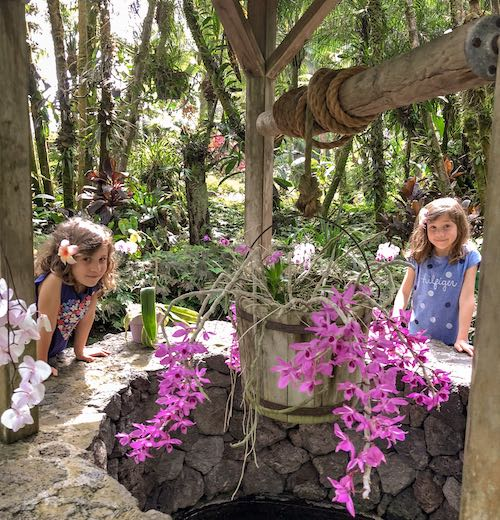Two little girls next to a water well with purple orchids on Big Island Hawaii