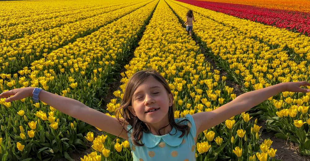 Little girls having fun at the Netherlands tulip fields