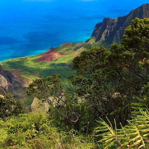 Hawaii best island for families that love active travel is Kauai