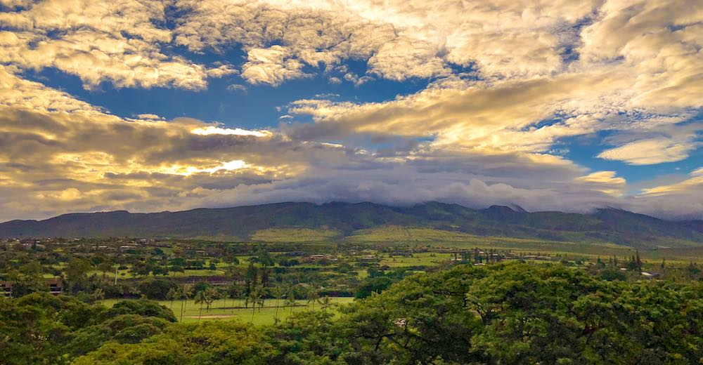 Exploring the forest reserve is a great outdoorsy things to do with kids on Maui