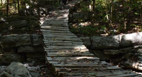Monte Sano Land Trust | Huntsville, Alabama