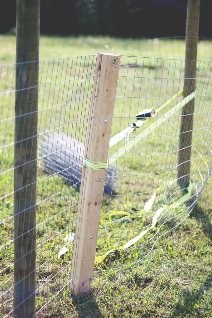 How to Make an Amish Fence Puller | Cosmopolitan Cornbread