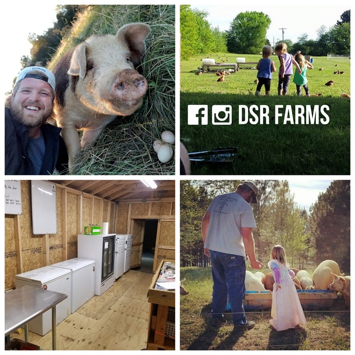 "Home Grown Alabama: DSR Farms | Visiting a north Alabama family who became ""accidental farmers."""