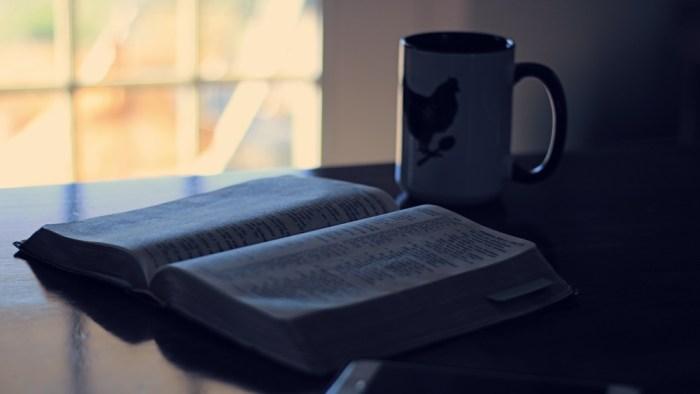 Daily Scriptures | Cosmopolitan Cornbread