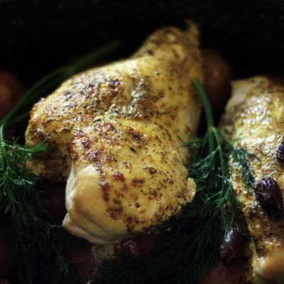 Baked Chicken with Lemon & Dill